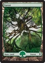 Forest 249 D