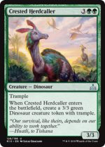 crested-herdcaller